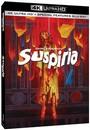 Suspiria - 4K Ultra HD + Blu-Ray Disc